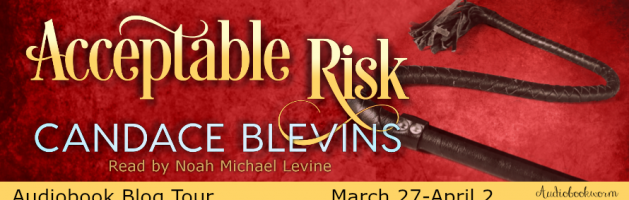 ? Audio Blog Tour: Acceptable Risk by Candace Blevins