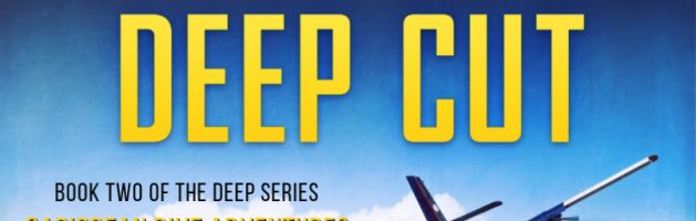 🎧 Audio Blog Tour: Deep Cut by Nick Sullivan