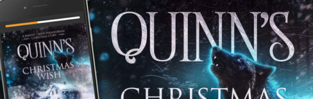 🎧  Audio Blog Tour: Quinn's Christmas Wish by Lawna Mackie