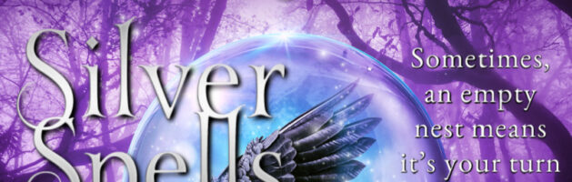 🎧 Audio Tour: Silver Spells by Kate Moseman